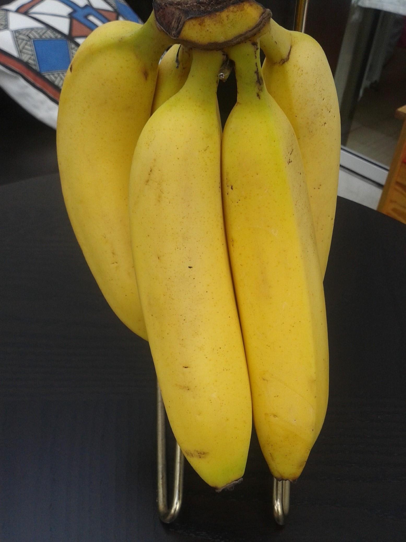 Genetisch gemodificeerd voedsel steeds verder in opmars