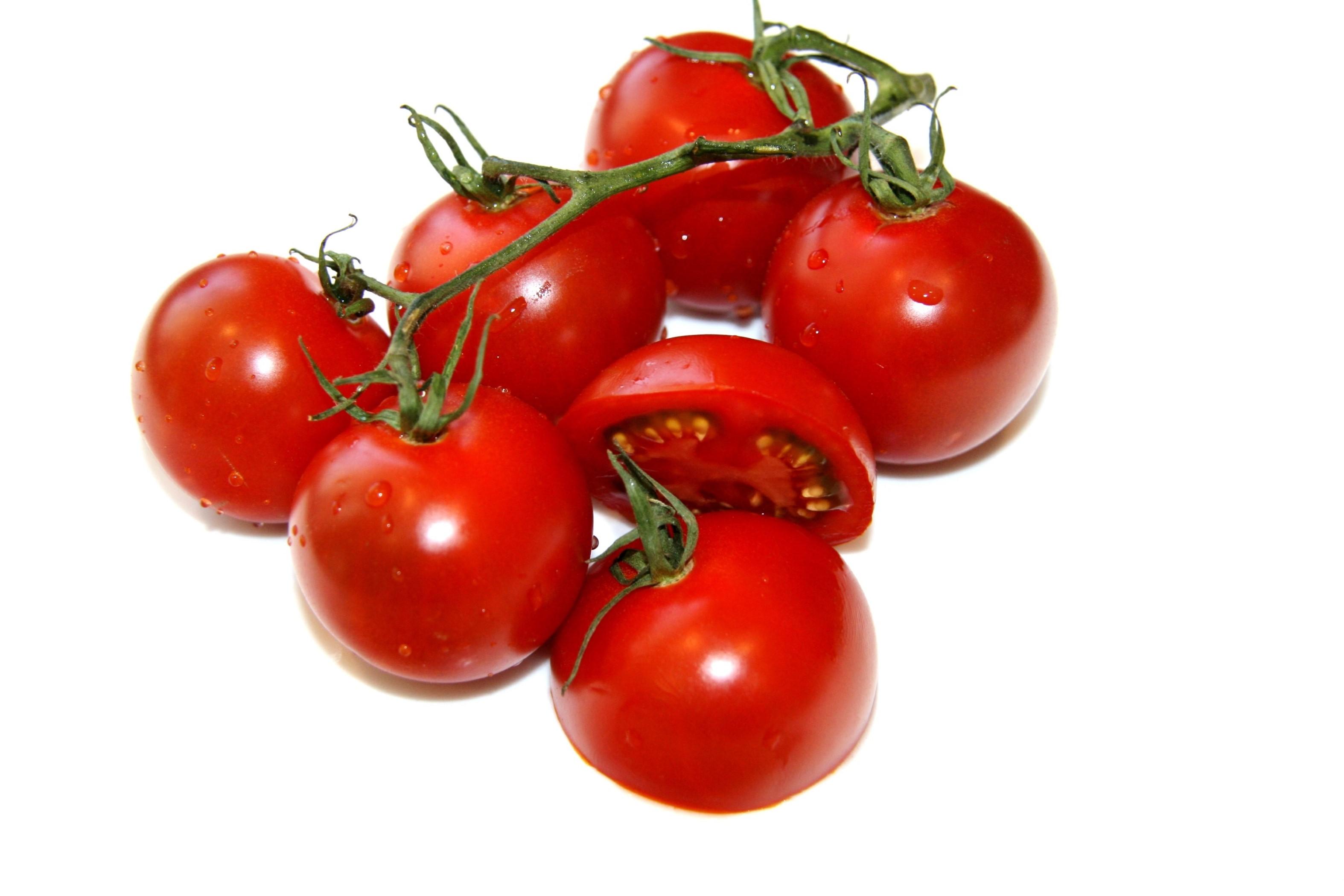 Toelichting 'Mars-tomaten-onderzoeker'
