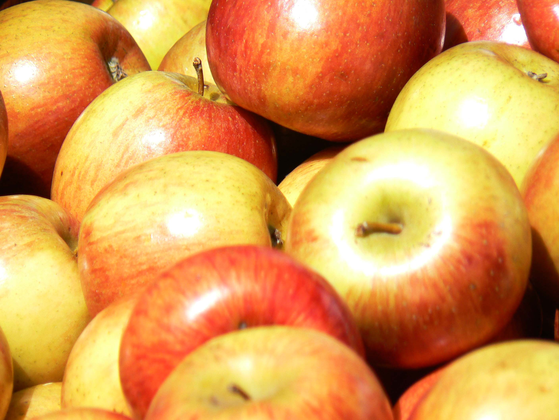 Mensen die appels eten leven langer