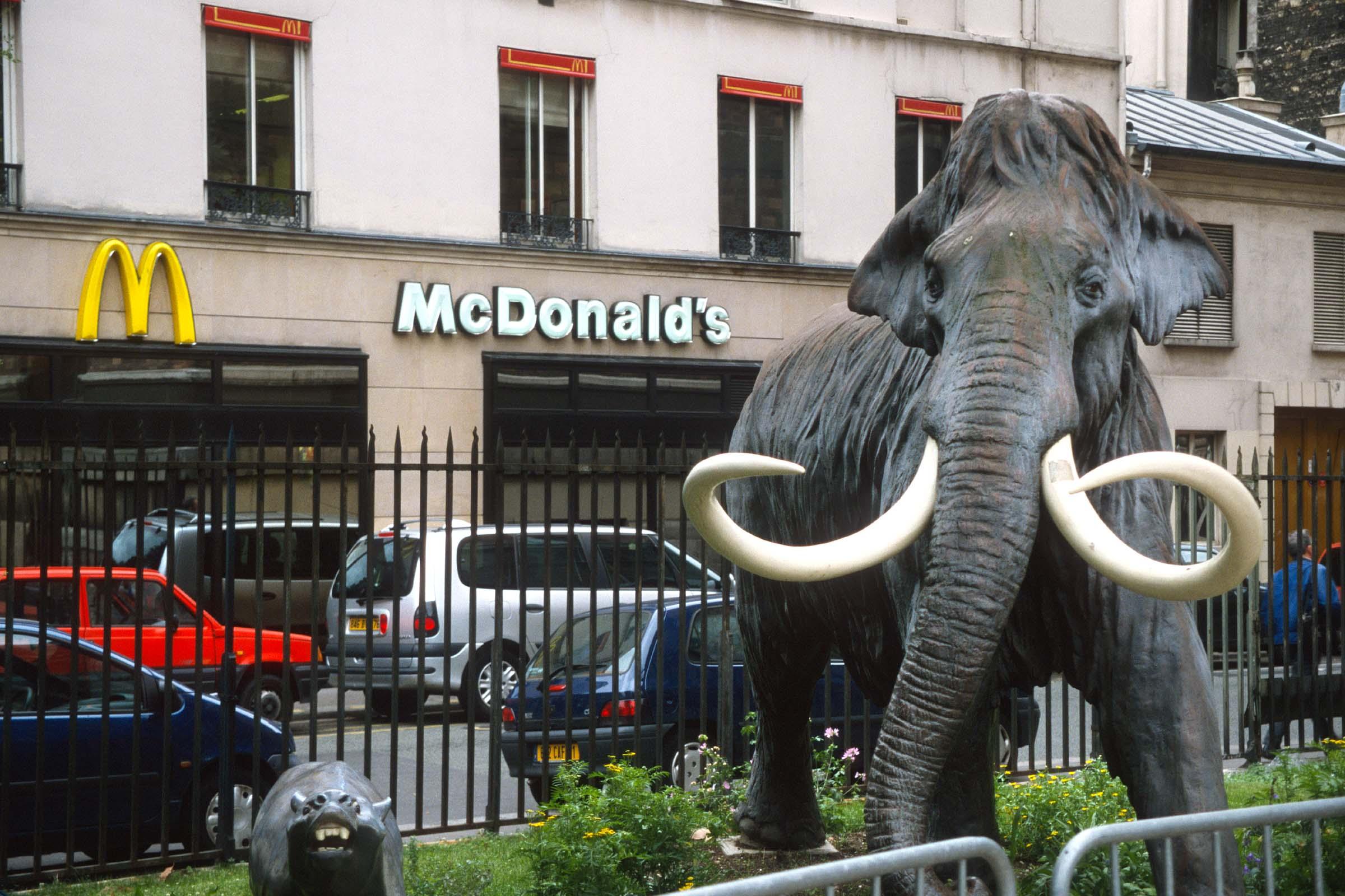 Is bioburger McB de redding van McDonald's?