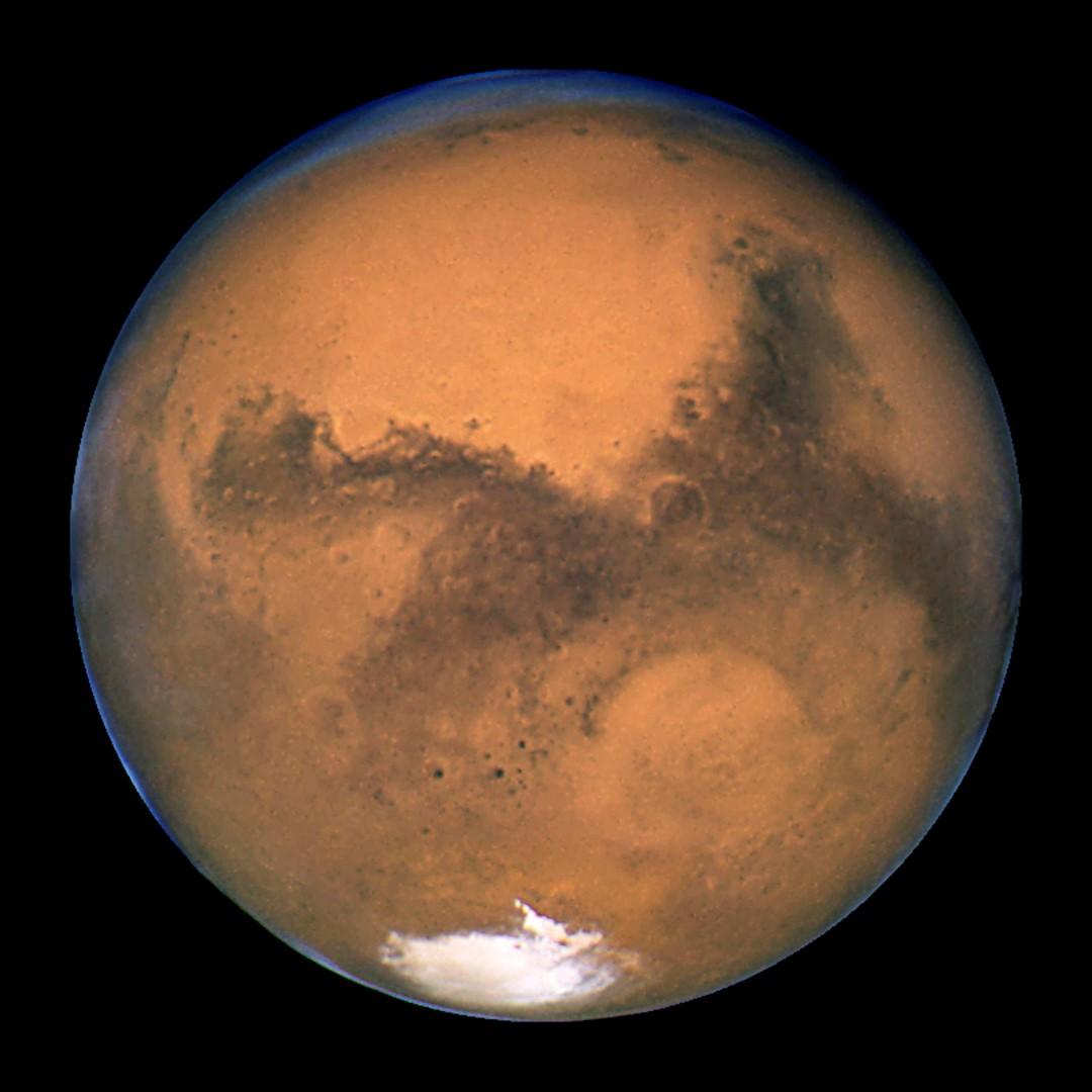 Hoe smaakt dat? Nederlander verbouwt eetbare groente op Mars-grond