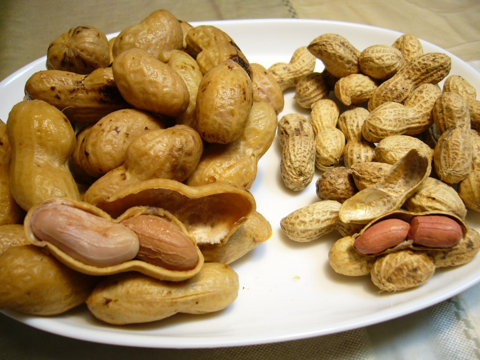 Jong pinda's eten voorkomt allergie