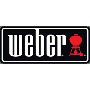 Weber elektrische bbq overzicht